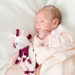 Soft toy girl - Kipic & Olga Hedgehog